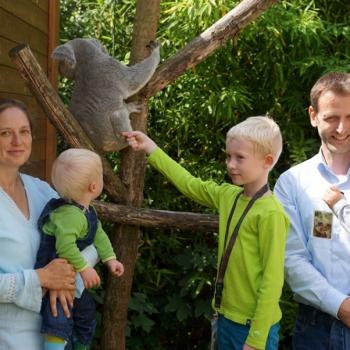 500.000ster Besucher Zoo Dresden