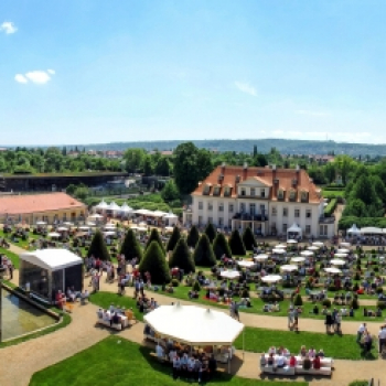 Federweißer und Live-Musik auf Schloss Wackerbarth am kommenden Wochenende