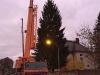 Rotfichte schmückt 582. Dresdner Striezelmarkt